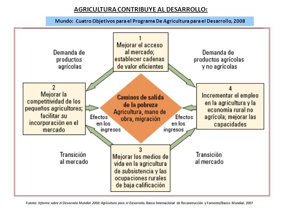 AGRICULTURA CONTRIBUYE AL DESARROLLO: