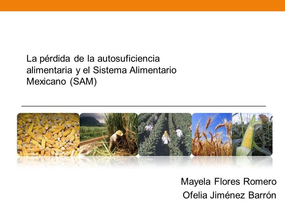 La pérdida de la autosuficiencia alimentaria y el Sistema Alimentario Mexicano (SAM)