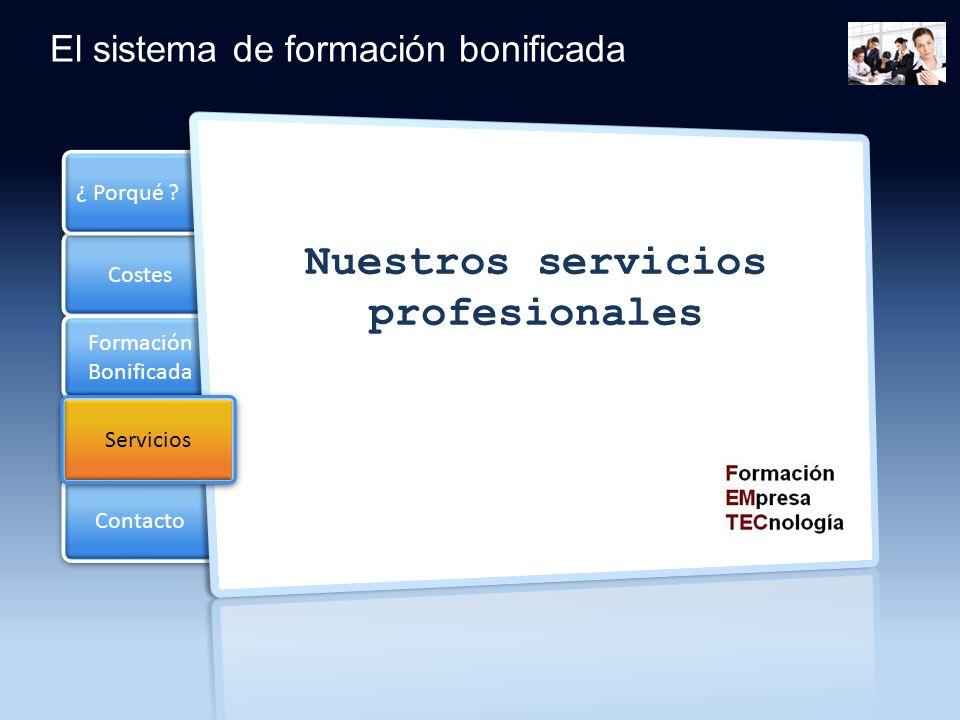 Nuestros servicios profesionales