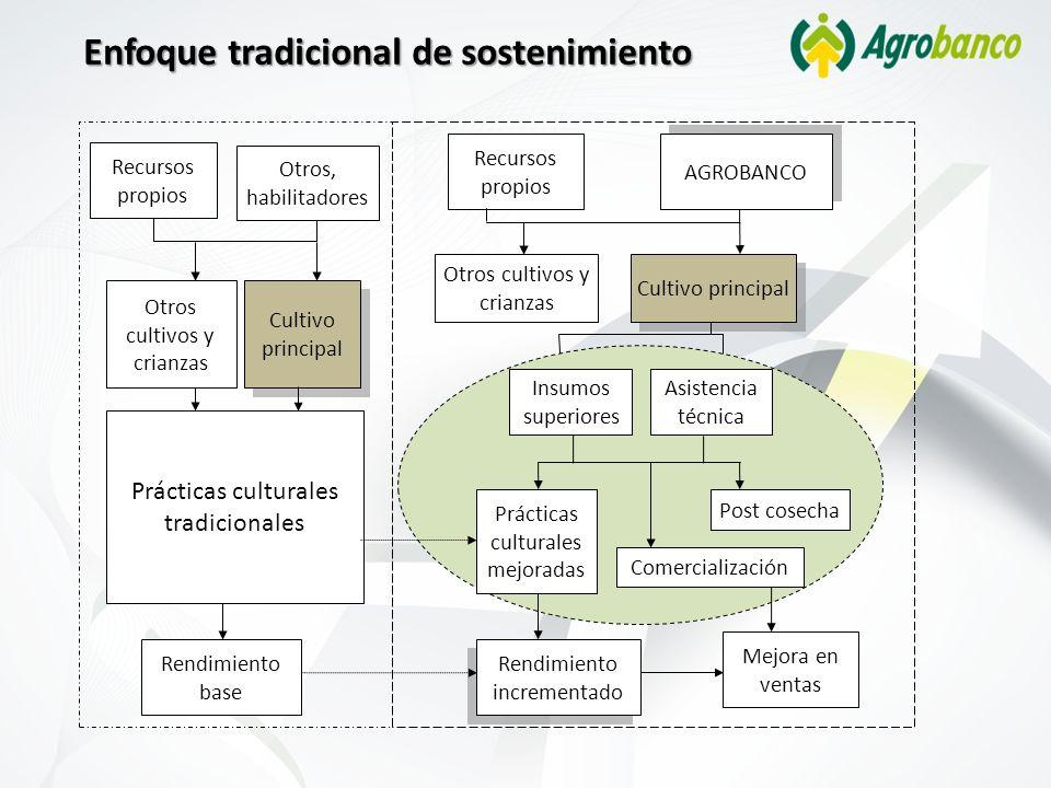 Enfoque tradicional de sostenimiento