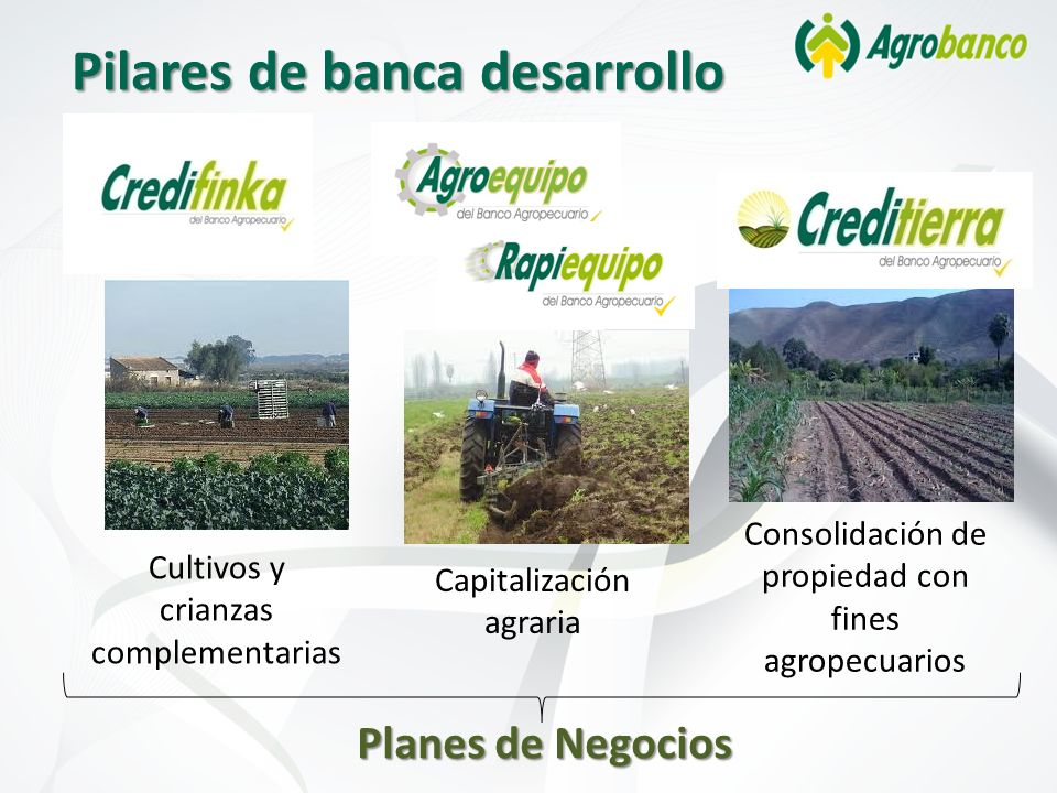Pilares de banca desarrollo