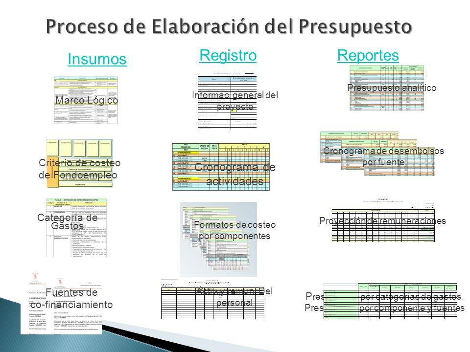 Proceso de Elaboración del Presupuesto