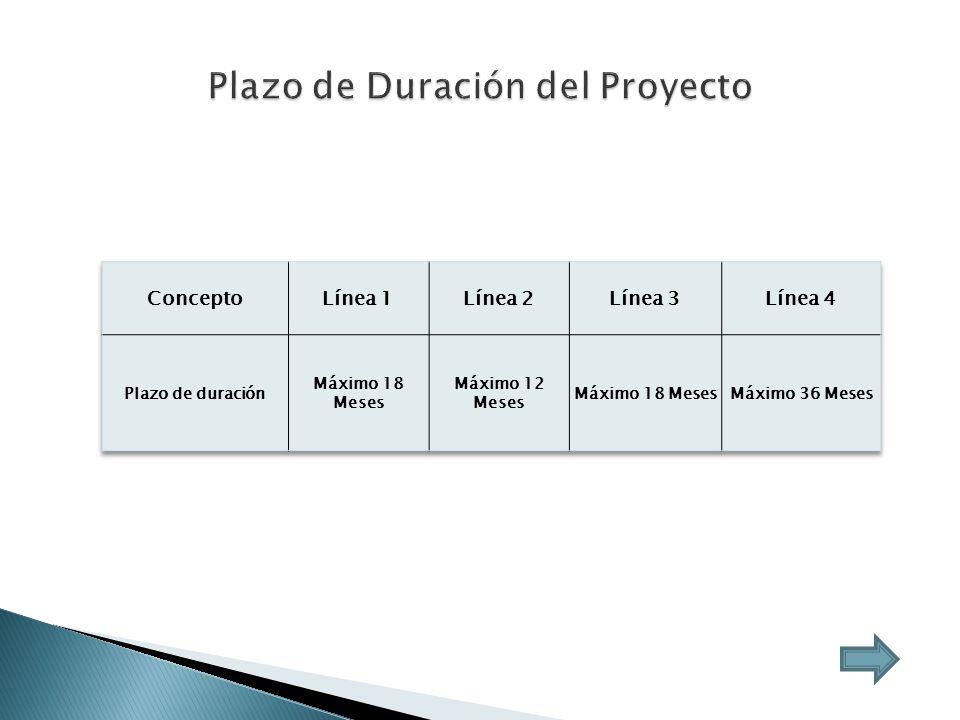 Plazo de Duración del Proyecto