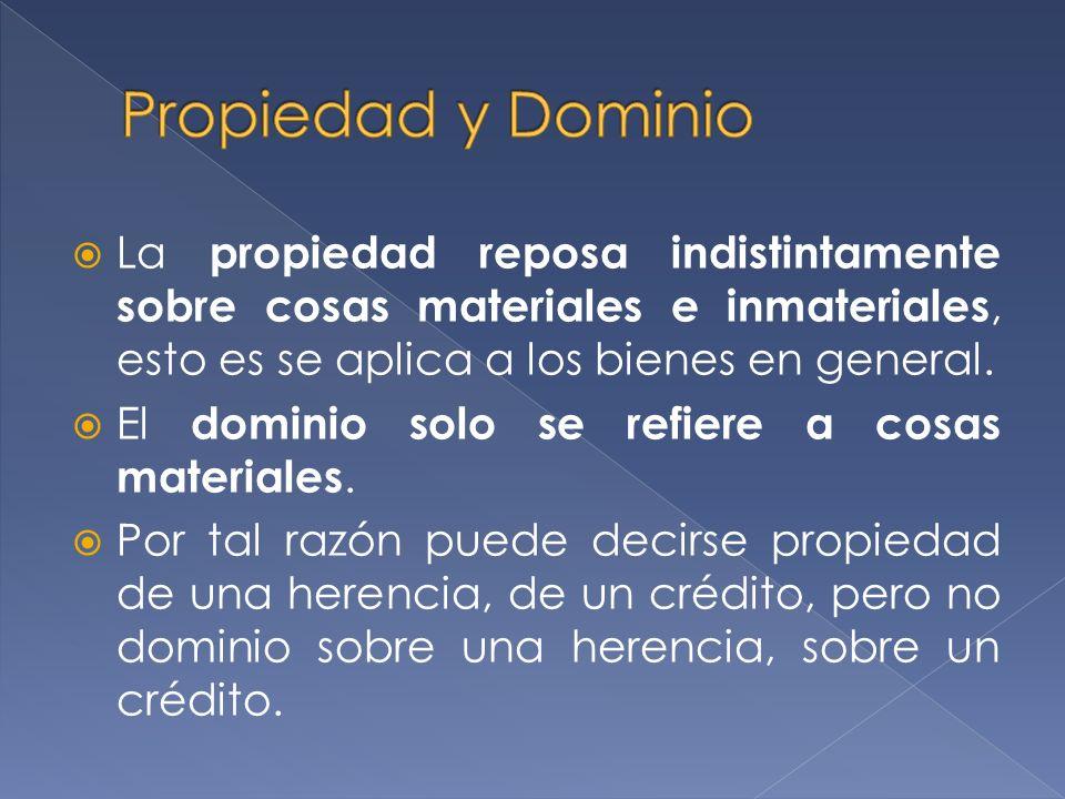 Propiedad y Dominio La propiedad reposa indistintamente sobre cosas materiales e inmateriales, esto es se aplica a los bienes en general.