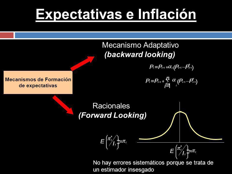 Expectativas e Inflación Mecanismos de Formación