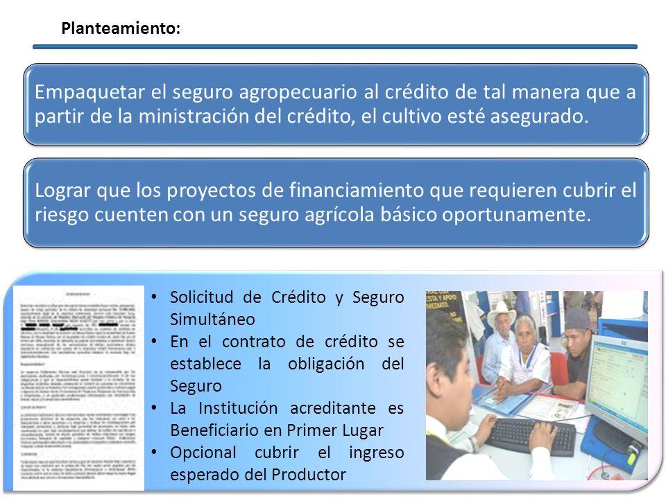 Planteamiento: Empaquetar el seguro agropecuario al crédito de tal manera que a partir de la ministración del crédito, el cultivo esté asegurado.