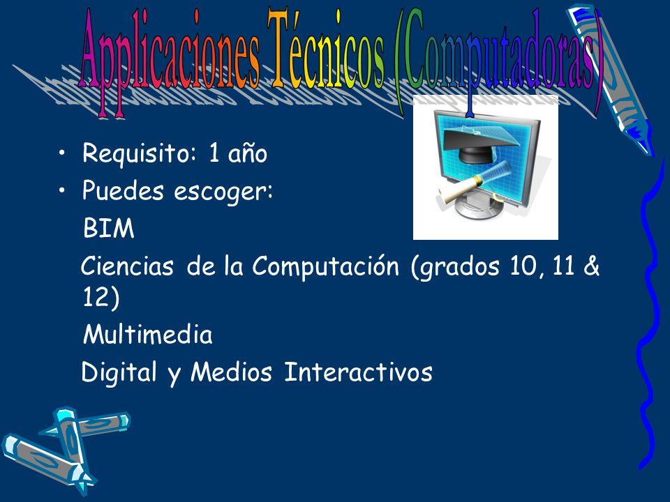 Requisito: 1 año Puedes escoger: BIM. Ciencias de la Computación (grados 10, 11 & 12) Multimedia.