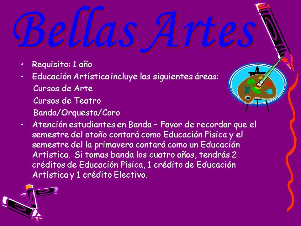 Requisito: 1 año Educación Artística incluye las siguientes áreas: Cursos de Arte. Cursos de Teatro.