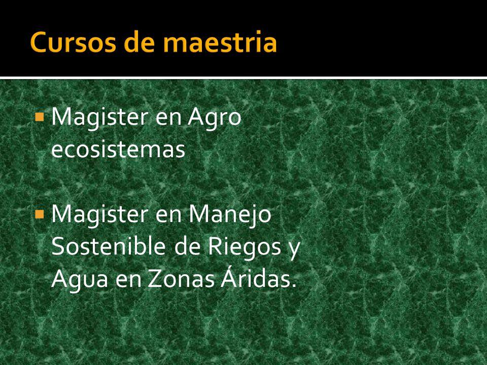 Cursos de maestria Magister en Agro ecosistemas