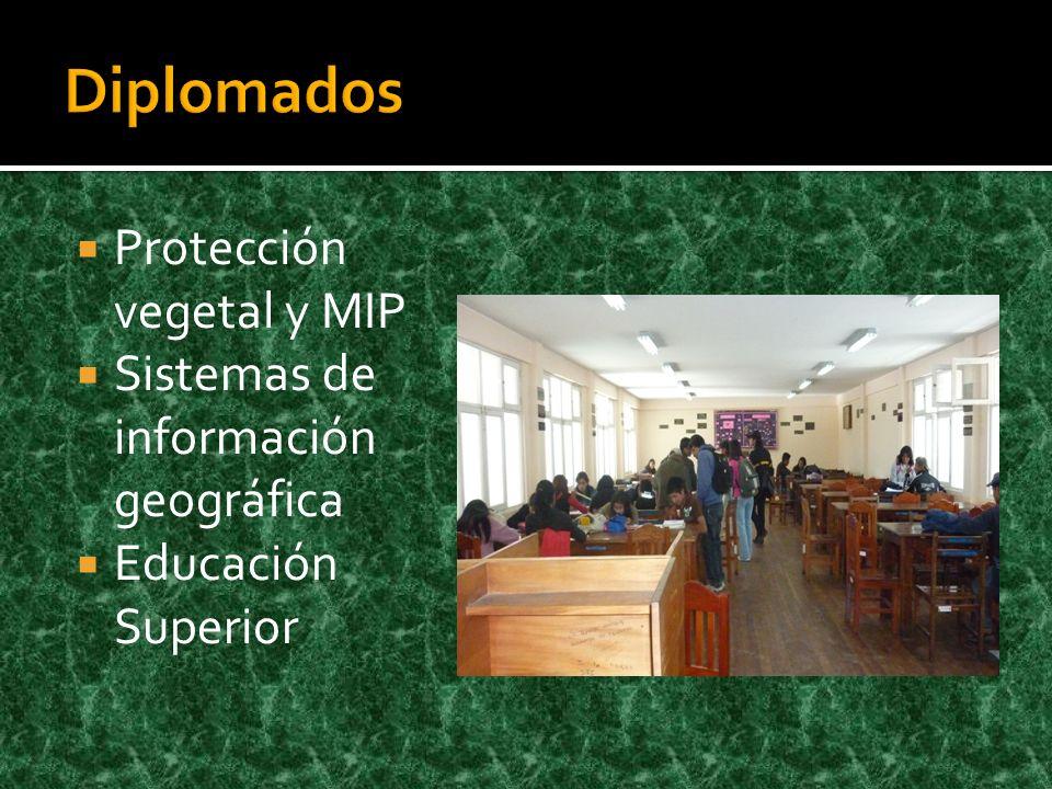 Diplomados Protección vegetal y MIP Sistemas de información geográfica