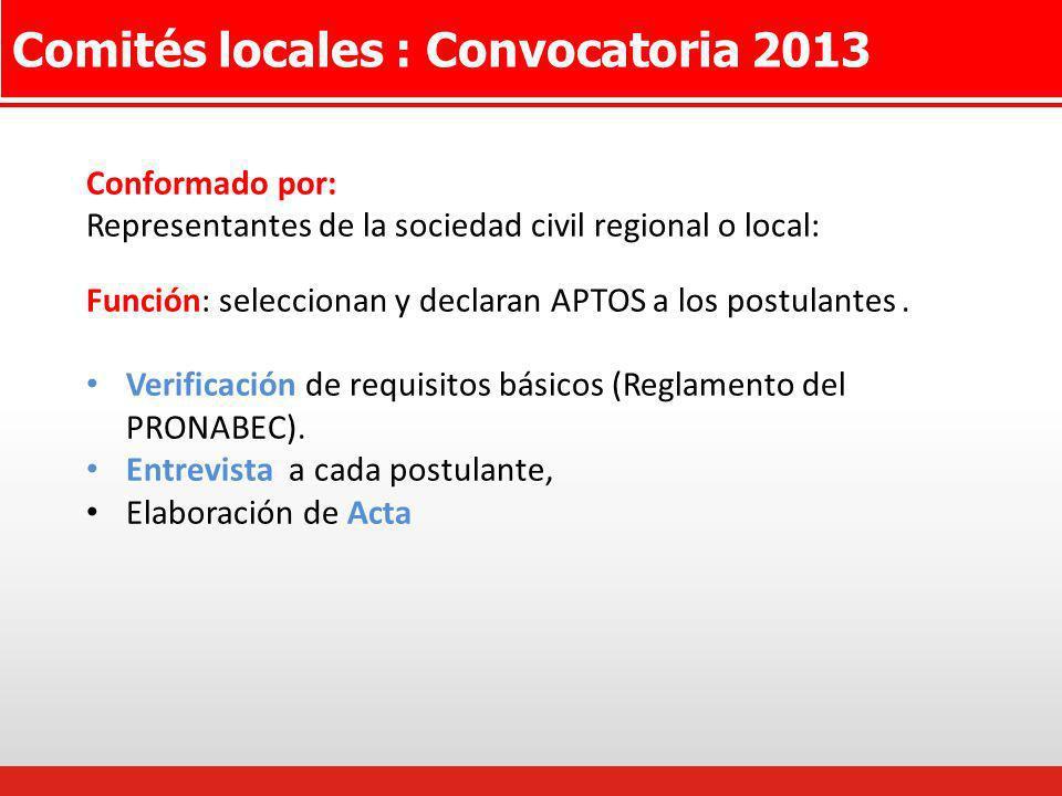 Comités locales : Convocatoria 2013