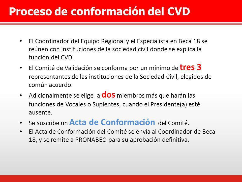 Proceso de conformación del CVD