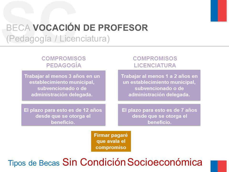 Tipos de Becas Sin Condición Socioeconómica