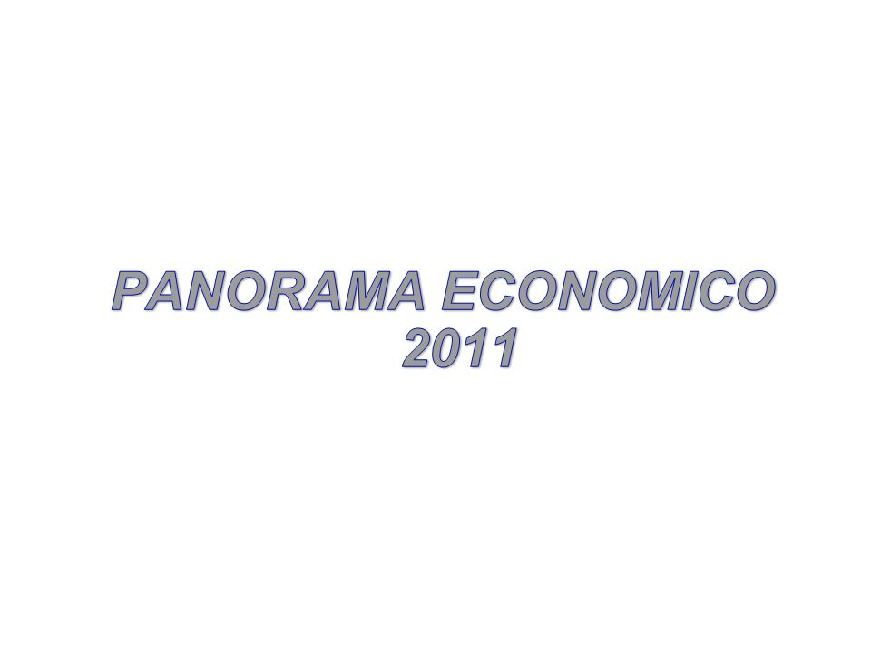 PANORAMA ECONOMICO 2011