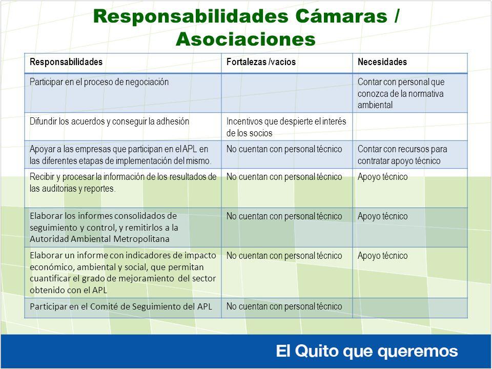 Responsabilidades Cámaras / Asociaciones