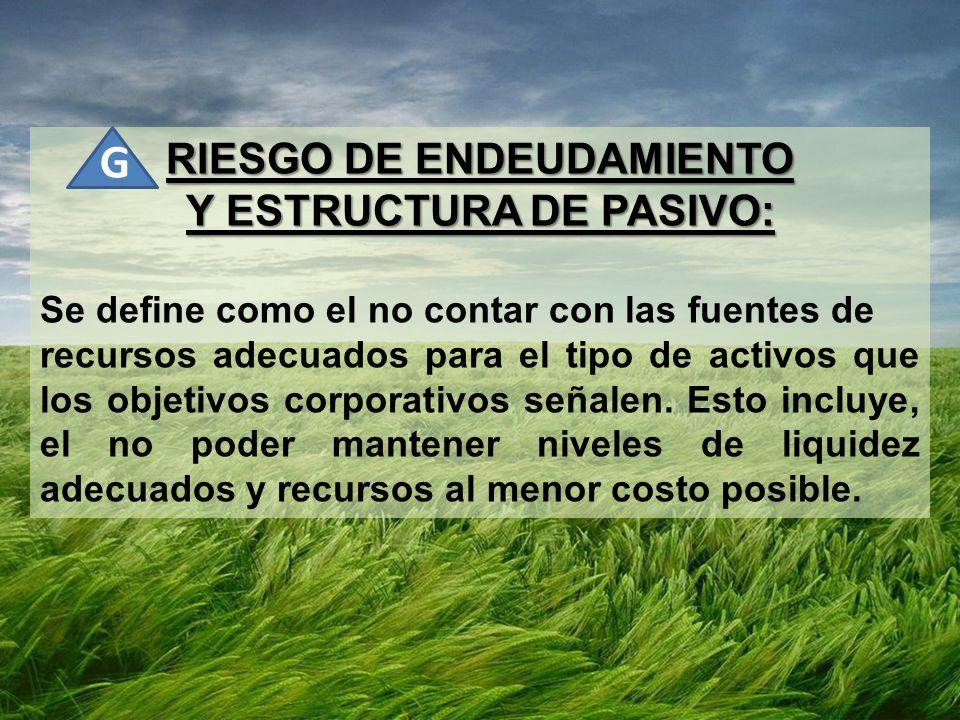 RIESGO DE ENDEUDAMIENTO Y ESTRUCTURA DE PASIVO: