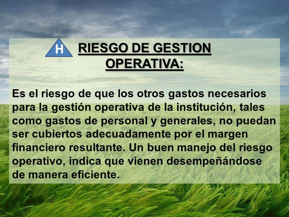 H RIESGO DE GESTION OPERATIVA: