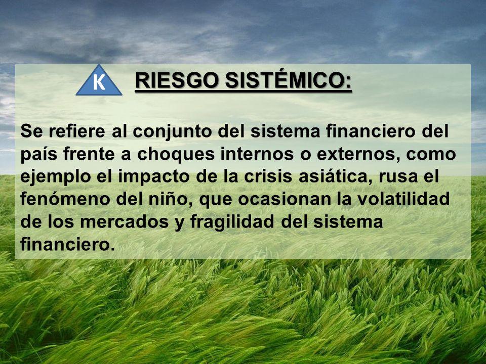 RIESGO SISTÉMICO:
