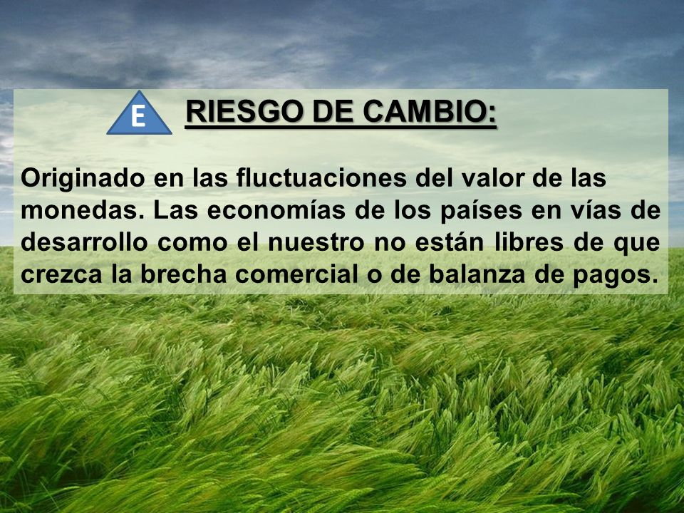 E RIESGO DE CAMBIO: Originado en las fluctuaciones del valor de las