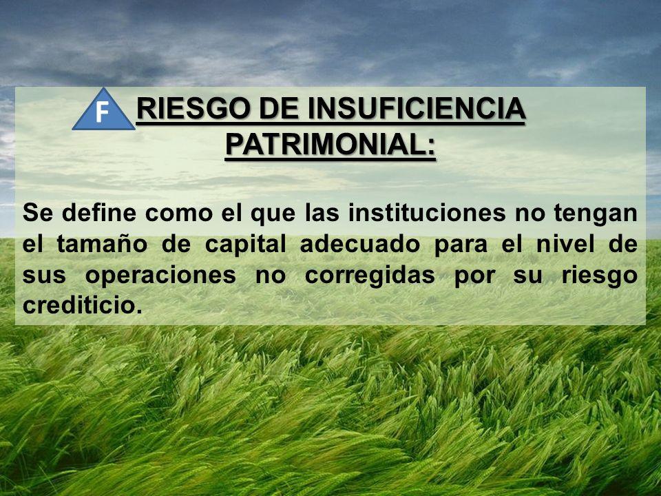RIESGO DE INSUFICIENCIA