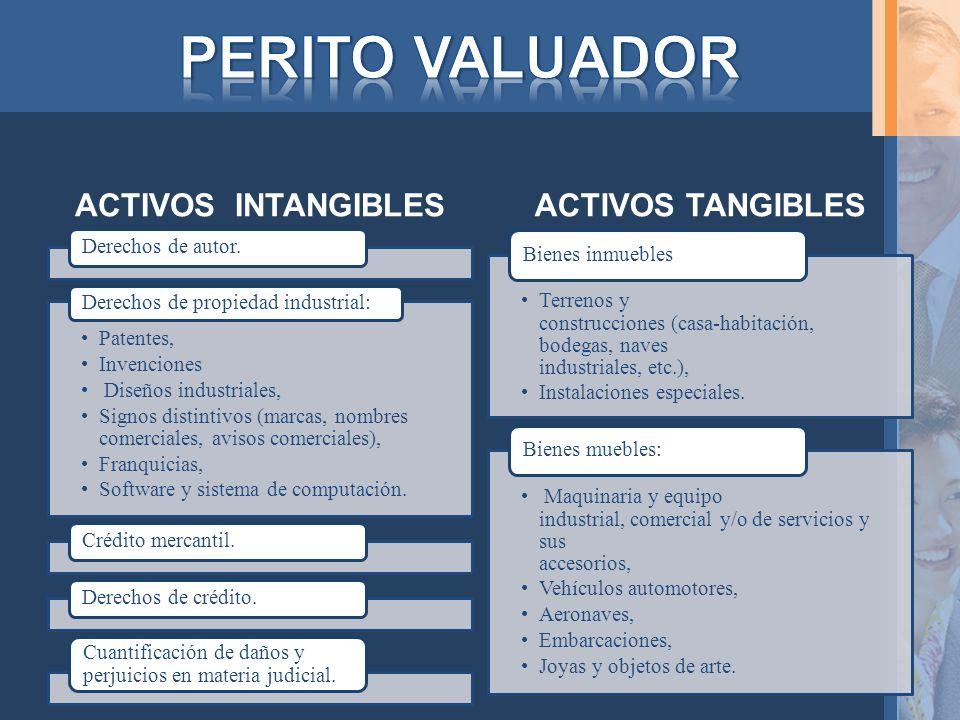 PERITO VALUADOR ACTIVOS INTANGIBLES ACTIVOS TANGIBLES
