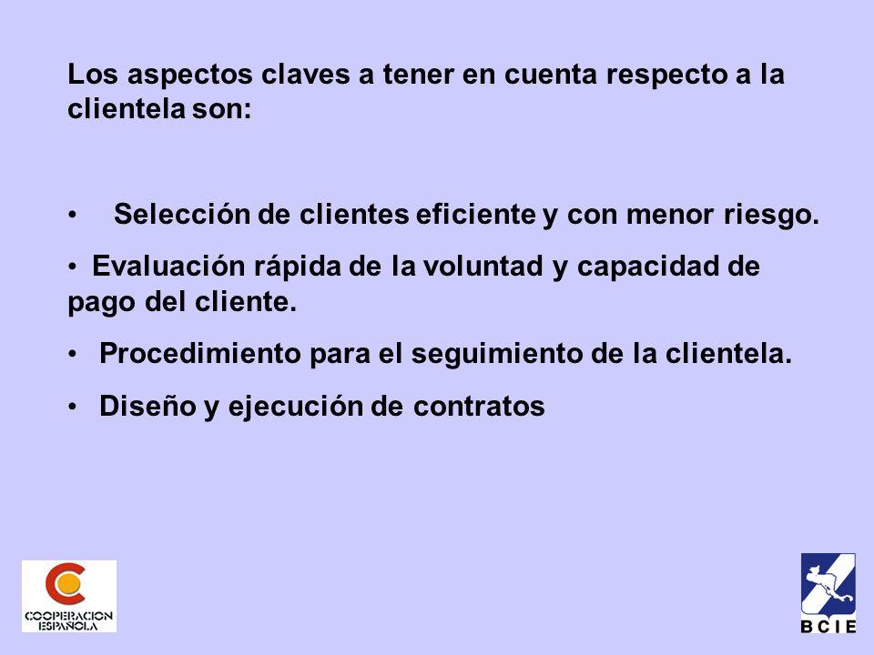 Los aspectos claves a tener en cuenta respecto a la clientela son: