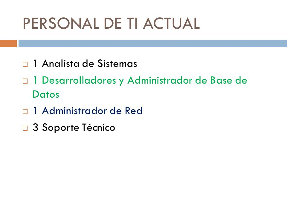 PERSONAL DE TI ACTUAL 1 Analista de Sistemas