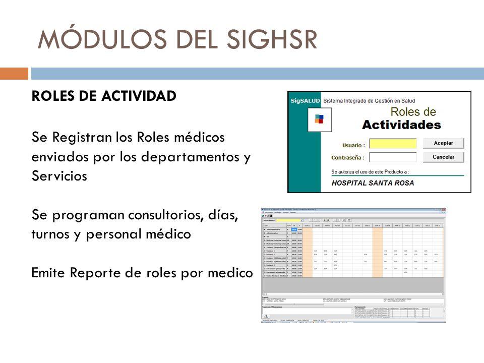 MÓDULOS DEL SIGHSR ROLES DE ACTIVIDAD