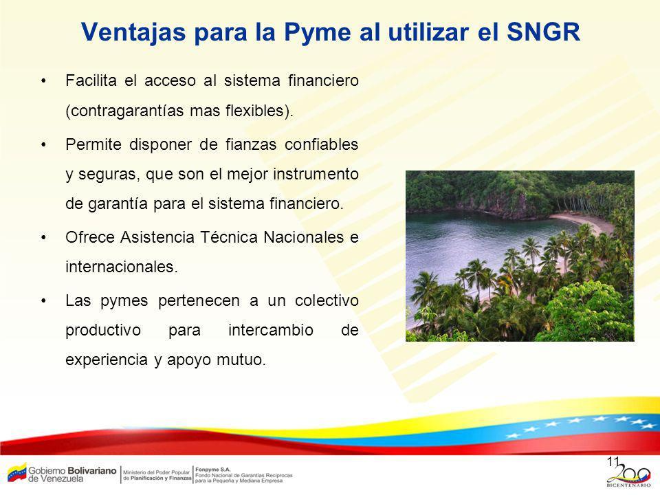 Ventajas para la Pyme al utilizar el SNGR