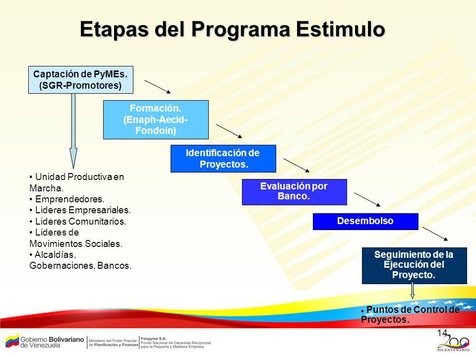 Etapas del Programa Estimulo
