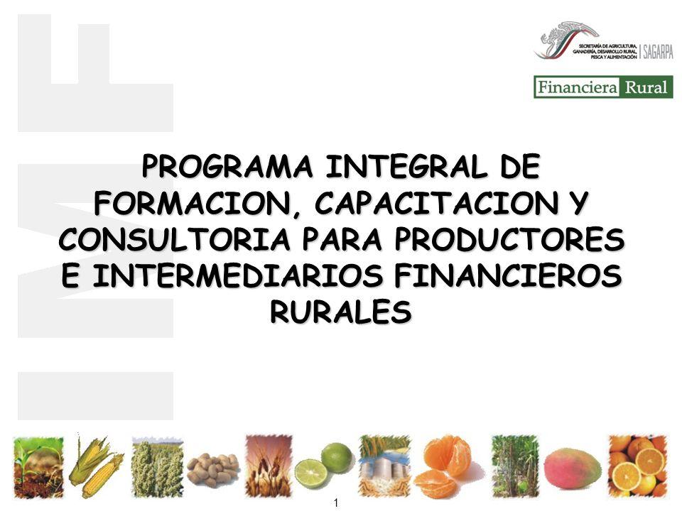 PROGRAMA INTEGRAL DE FORMACION, CAPACITACION Y CONSULTORIA PARA PRODUCTORES E INTERMEDIARIOS FINANCIEROS RURALES