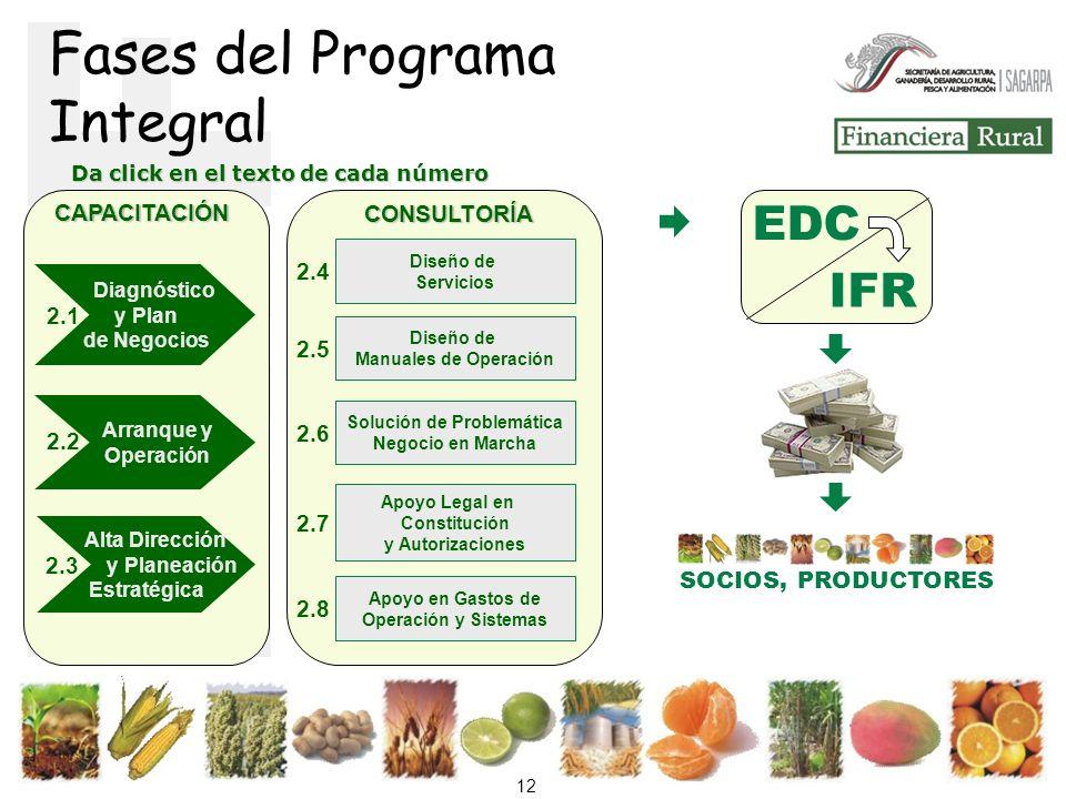 Fases del Programa Integral