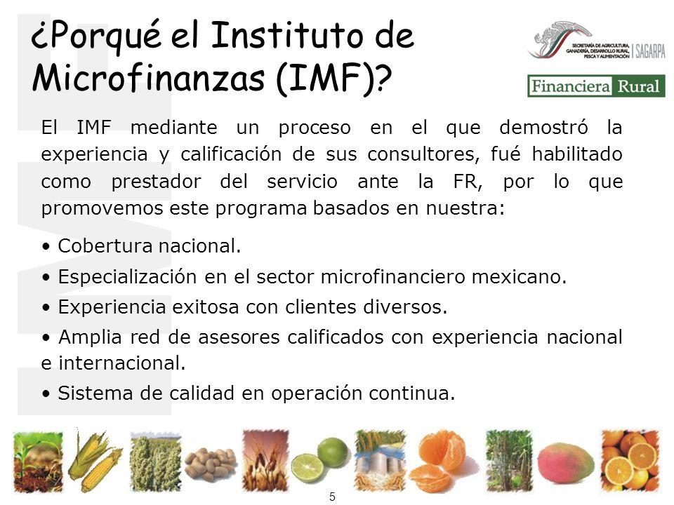 ¿Porqué el Instituto de Microfinanzas (IMF)