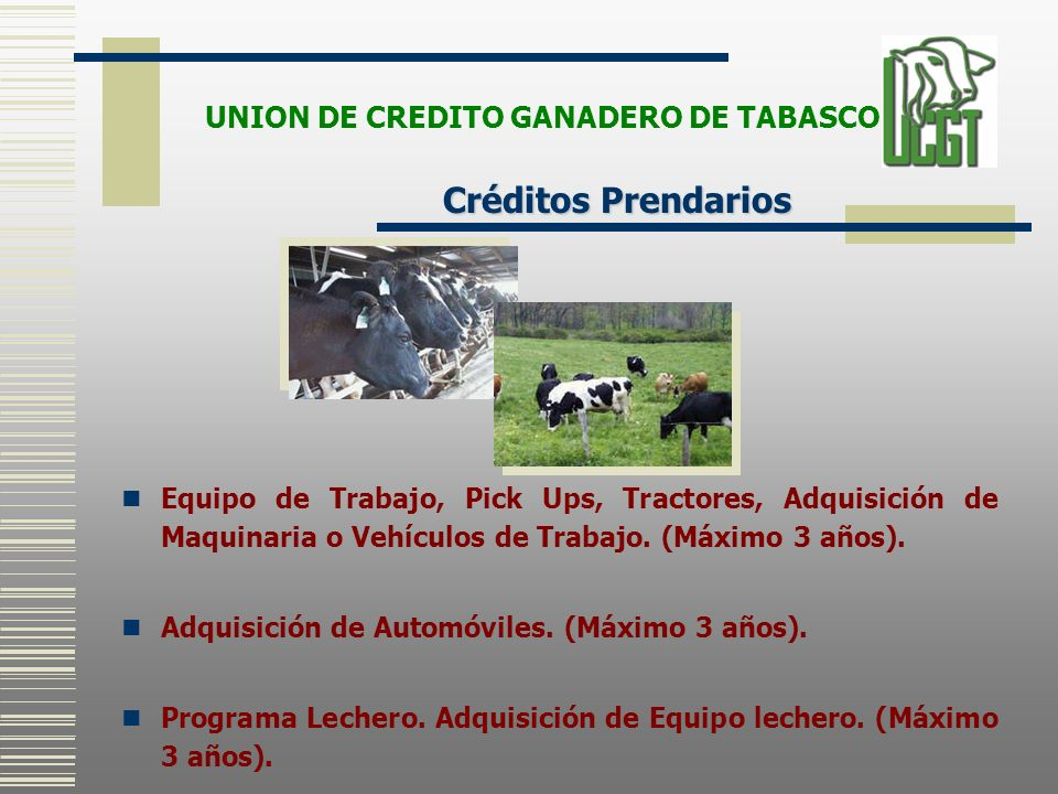 UNION DE CREDITO GANADERO DE TABASCO