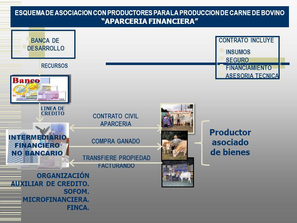 APARCERIA FINANCIERA Productor asociado de bienes