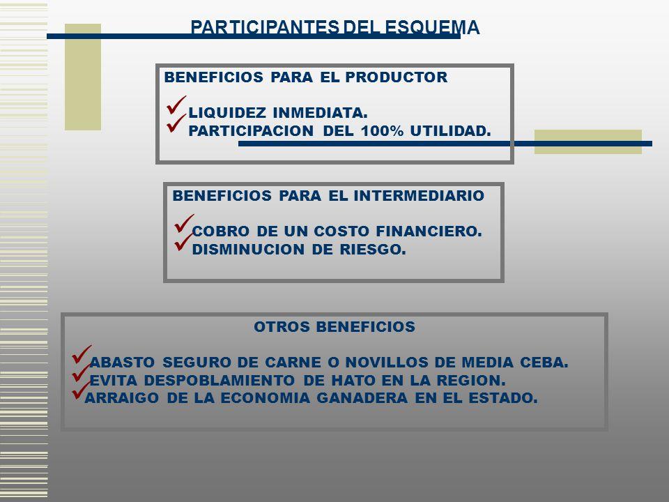 PARTICIPANTES DEL ESQUEMA