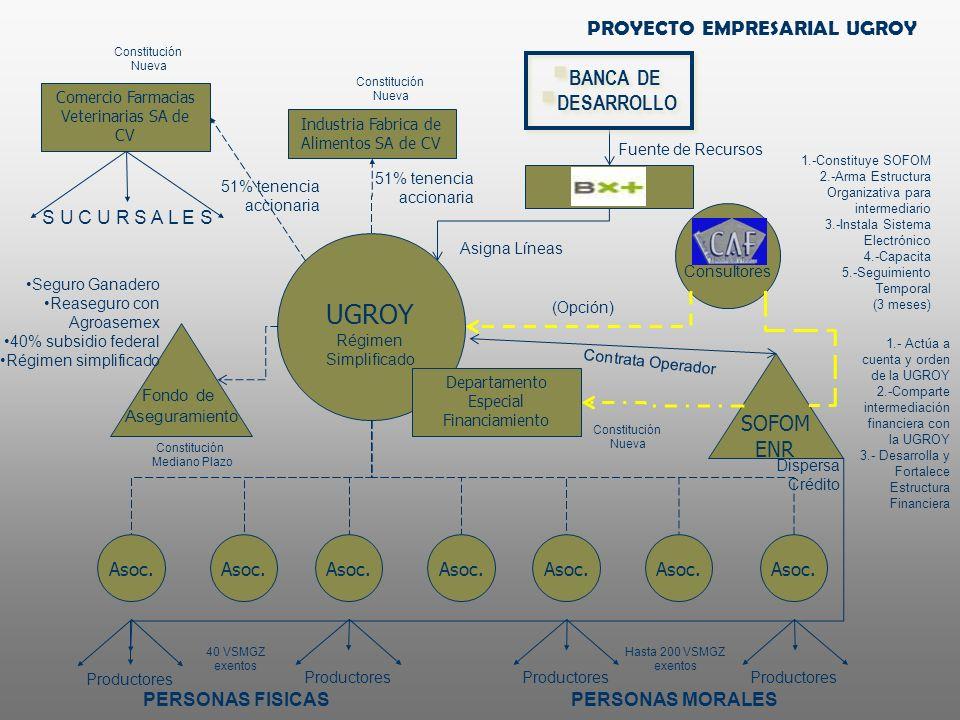 UGROY PROYECTO EMPRESARIAL UGROY BANCA DE DESARROLLO SOFOM ENR