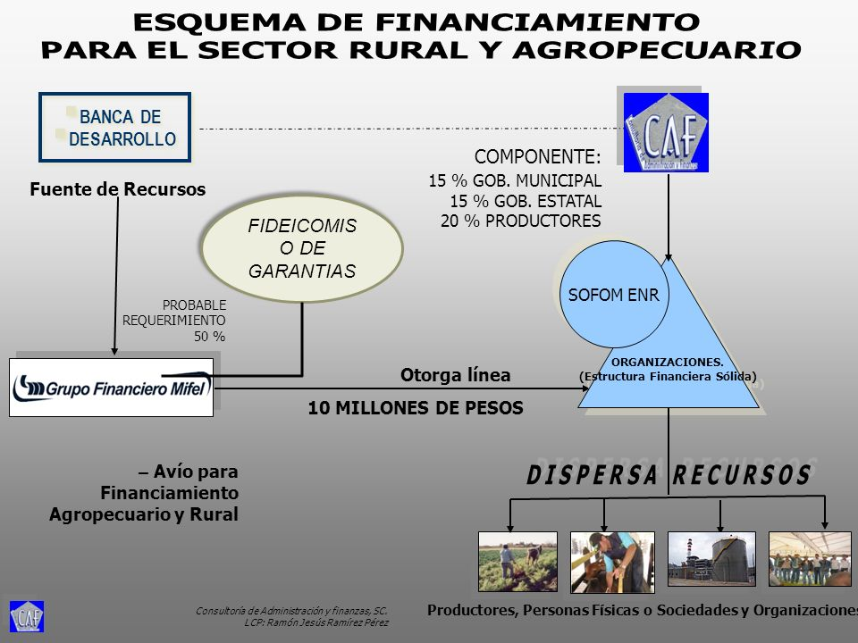ESQUEMA DE FINANCIAMIENTO PARA EL SECTOR RURAL Y AGROPECUARIO