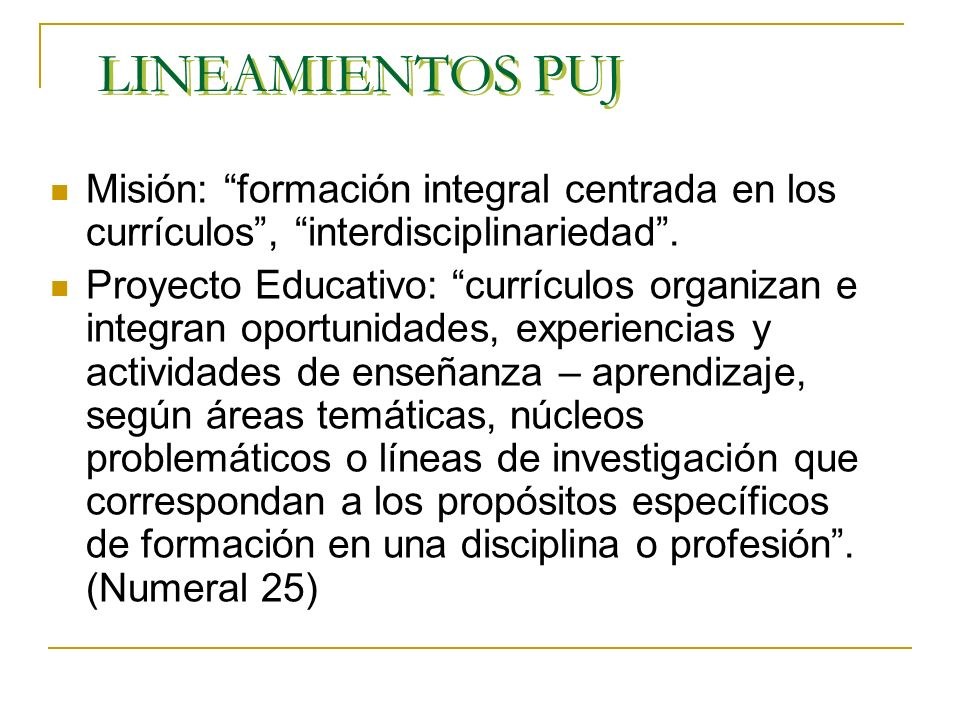 LINEAMIENTOS PUJ Misión: formación integral centrada en los currículos , interdisciplinariedad .