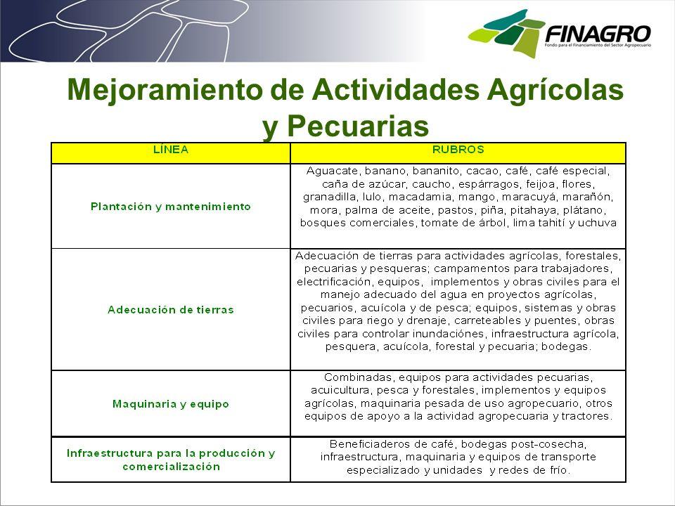 Mejoramiento de Actividades Agrícolas y Pecuarias