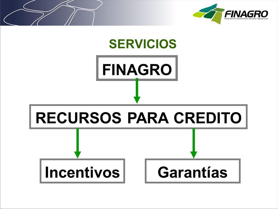 FINAGRO RECURSOS PARA CREDITO Incentivos Garantías