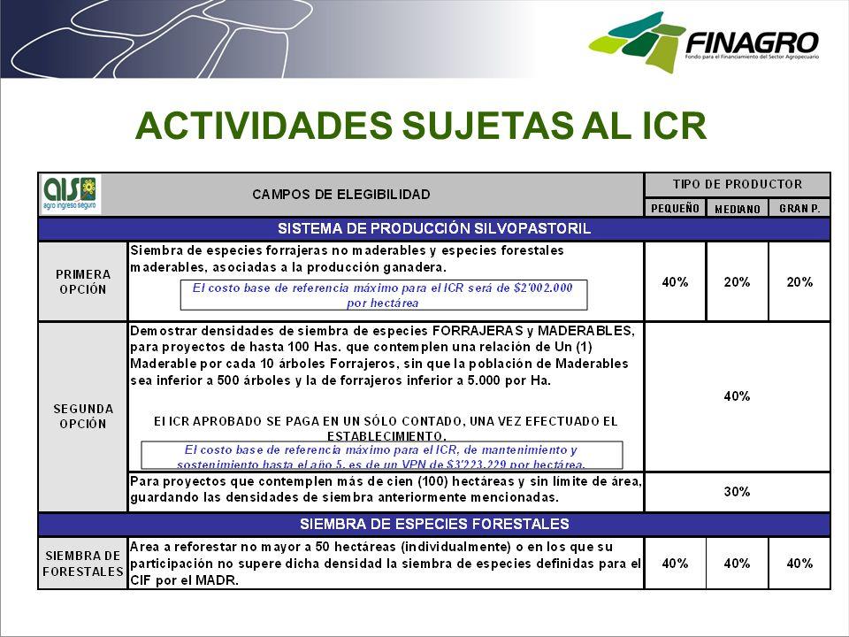 ACTIVIDADES SUJETAS AL ICR