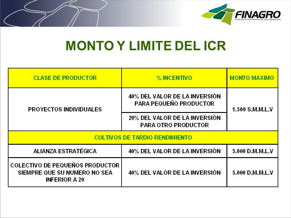 MONTO Y LIMITE DEL ICR