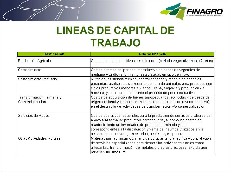 LINEAS DE CAPITAL DE TRABAJO