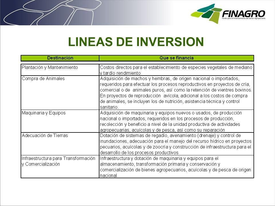 LINEAS DE INVERSION