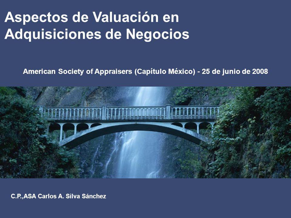 American Society of Appraisers (Capítulo México) - 25 de junio de 2008