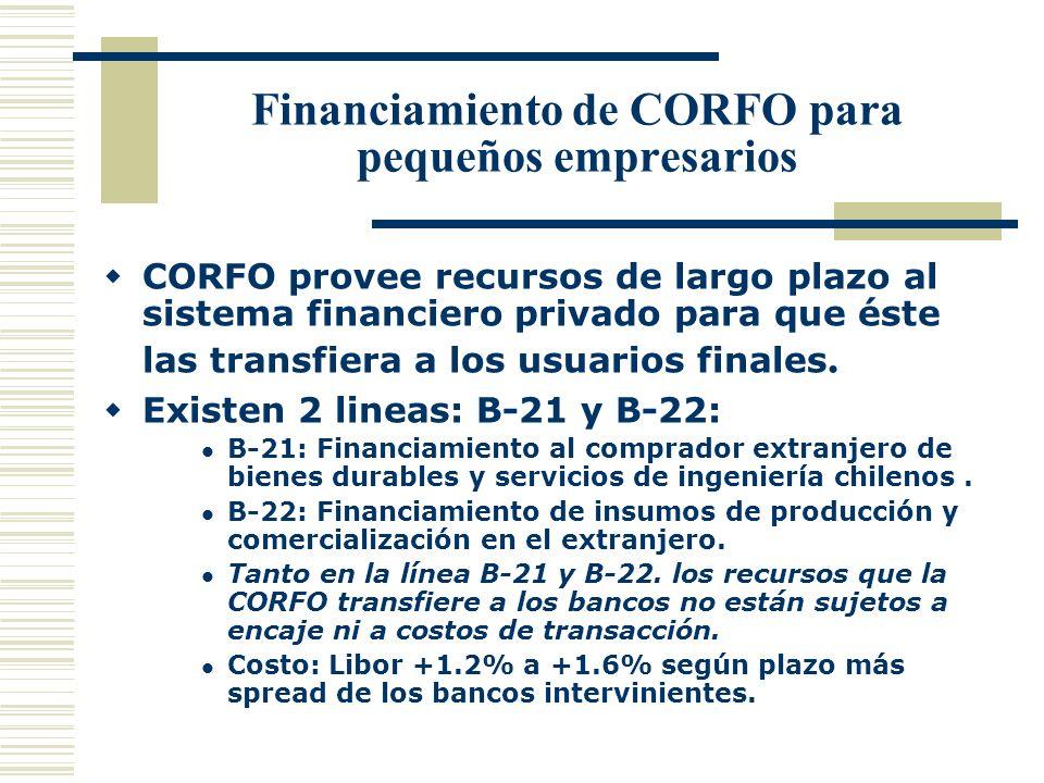 Financiamiento de CORFO para pequeños empresarios