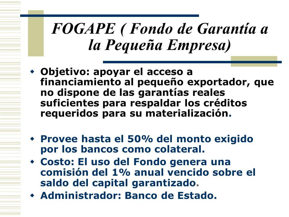 FOGAPE ( Fondo de Garantía a la Pequeña Empresa)