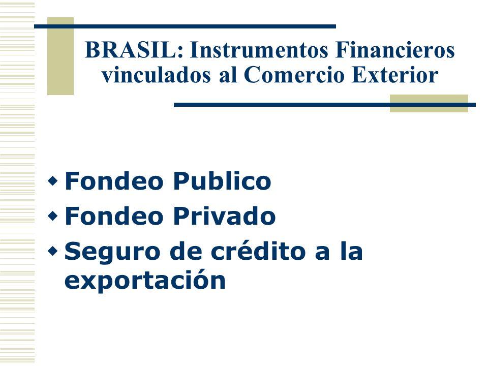 BRASIL: Instrumentos Financieros vinculados al Comercio Exterior