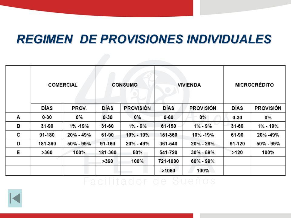 REGIMEN DE PROVISIONES INDIVIDUALES